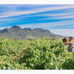 DK Photography LAST-SLIDE-101-285x285 Elanor & Delano's Wedding in Stellenrust Wine Estate, Stellenbosch  Cape Town Wedding photographer