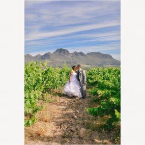 DK Photography LAST-SLIDE-104-285x285 Elanor & Delano's Wedding in Stellenrust Wine Estate, Stellenbosch  Cape Town Wedding photographer