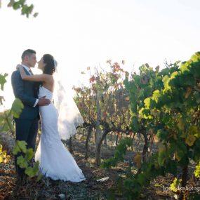 DK Photography CCD_4934-1-285x285 Preview ~ Clarissa & Dean's Wedding in D'Aria Function Venue, Durbanville