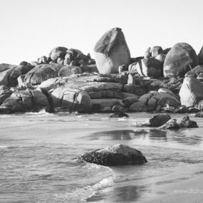 DK Photography dkp_8910-285x285 Preview ~ Beulah & Pierre's E session on Llandudno Beach  Cape Town Wedding photographer