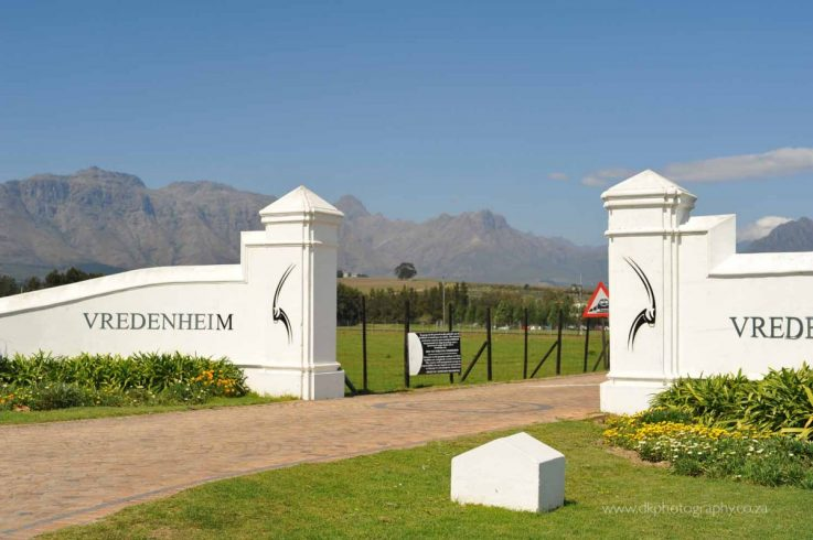DK Photography DSC_0381-737x490 Venue Spotlight ~ Hudson's in Vredenheim, Stellenbosch  Cape Town Wedding photographer