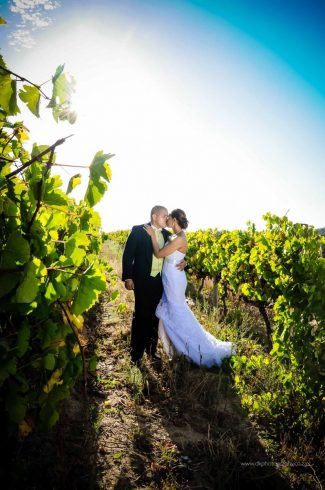 DK Photography DSC5135-325x490 Venue Spotlight ~ D'Aria Wedding and Function Venue, Durbanville  Cape Town Wedding photographer