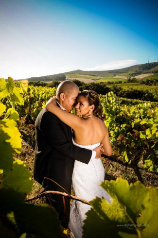 DK Photography DSC5143-325x490 Venue Spotlight ~ D'Aria Wedding and Function Venue, Durbanville  Cape Town Wedding photographer
