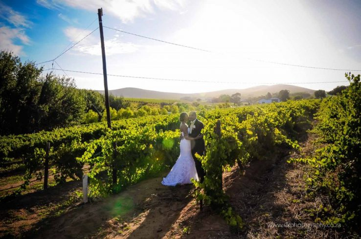 DK Photography DSC5213-738x490 Venue Spotlight ~ D'Aria Wedding and Function Venue, Durbanville  Cape Town Wedding photographer