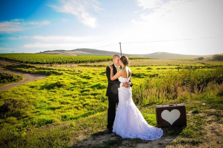 DK Photography DSC5229-738x490 Venue Spotlight ~ D'Aria Wedding and Function Venue, Durbanville  Cape Town Wedding photographer