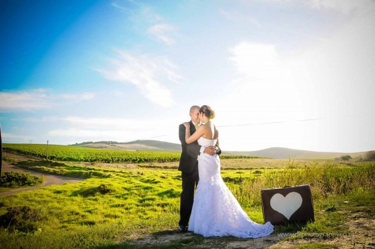 DK Photography DSC5230-738x490 Venue Spotlight ~ D'Aria Wedding and Function Venue, Durbanville  Cape Town Wedding photographer