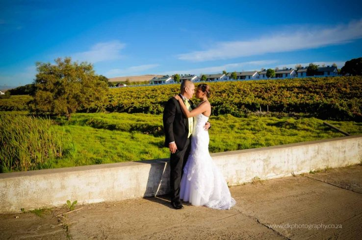 DK Photography DSC5238-738x490 Venue Spotlight ~ D'Aria Wedding and Function Venue, Durbanville  Cape Town Wedding photographer