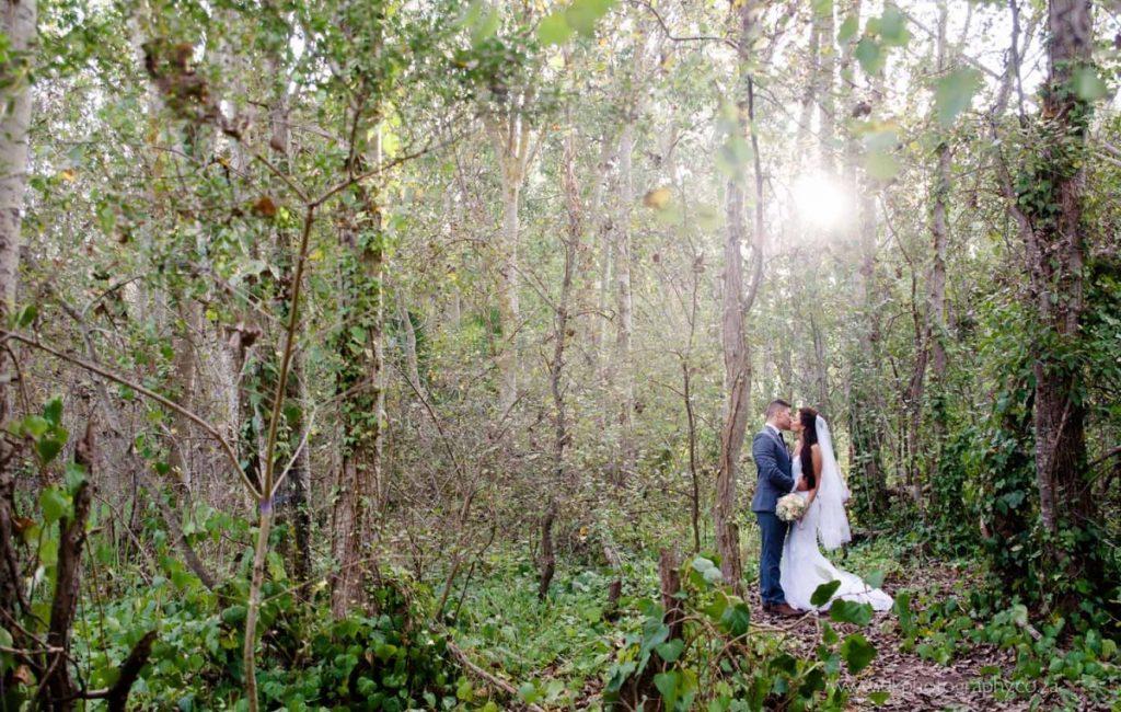 DK Photography ccd_4738-1024x650 Venue Spotlight ~ D'Aria Wedding and Function Venue, Durbanville  Cape Town Wedding photographer