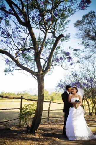 DK Photography dsc7060-325x490 Venue Spotlight ~ Welgelee Wedding & Function Venue, Paarl  Cape Town Wedding photographer