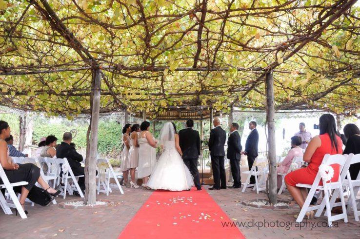 DK Photography dsc9045-738x490 Venue Spotlight ~ Welgelee Wedding & Function Venue, Paarl  Cape Town Wedding photographer