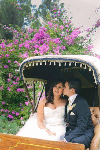 DK Photography dsc_4031-327x490 Venue Spotlight ~ Welgelee Wedding & Function Venue, Paarl  Cape Town Wedding photographer