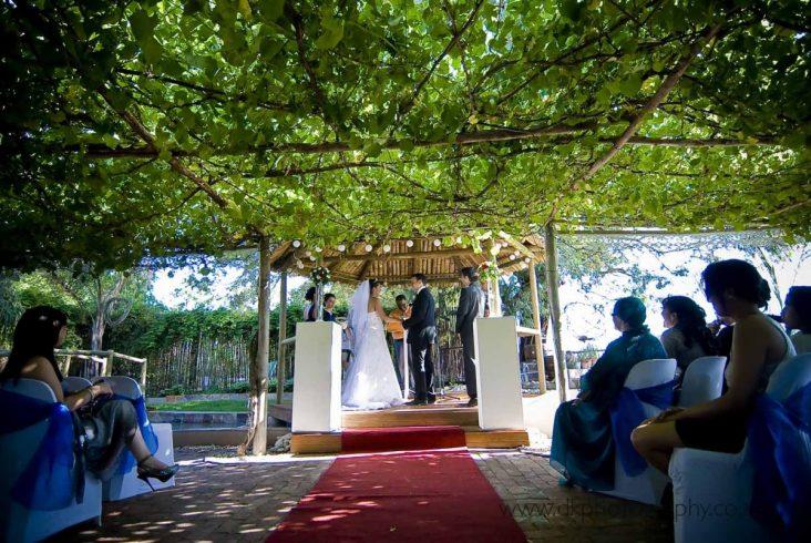 DK Photography dsc_9491-732x490 Venue Spotlight ~ Welgelee Wedding & Function Venue, Paarl  Cape Town Wedding photographer