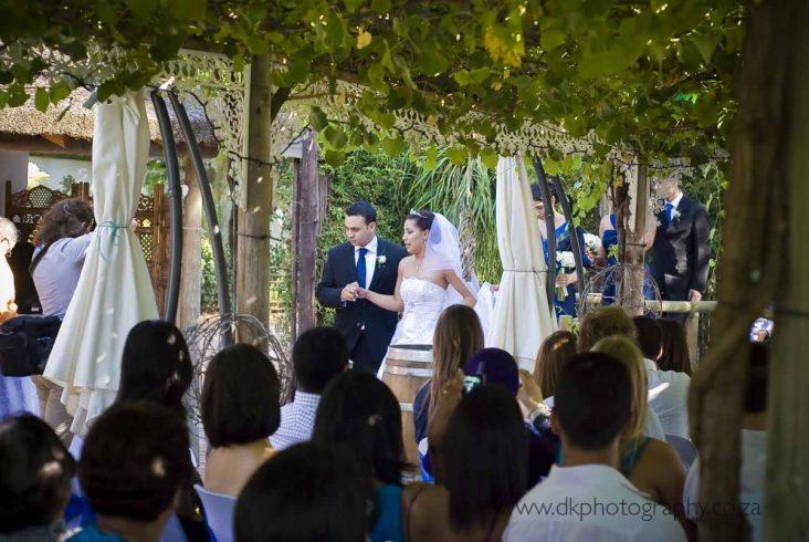 DK Photography dsc_9502-732x490 Venue Spotlight ~ Welgelee Wedding & Function Venue, Paarl  Cape Town Wedding photographer