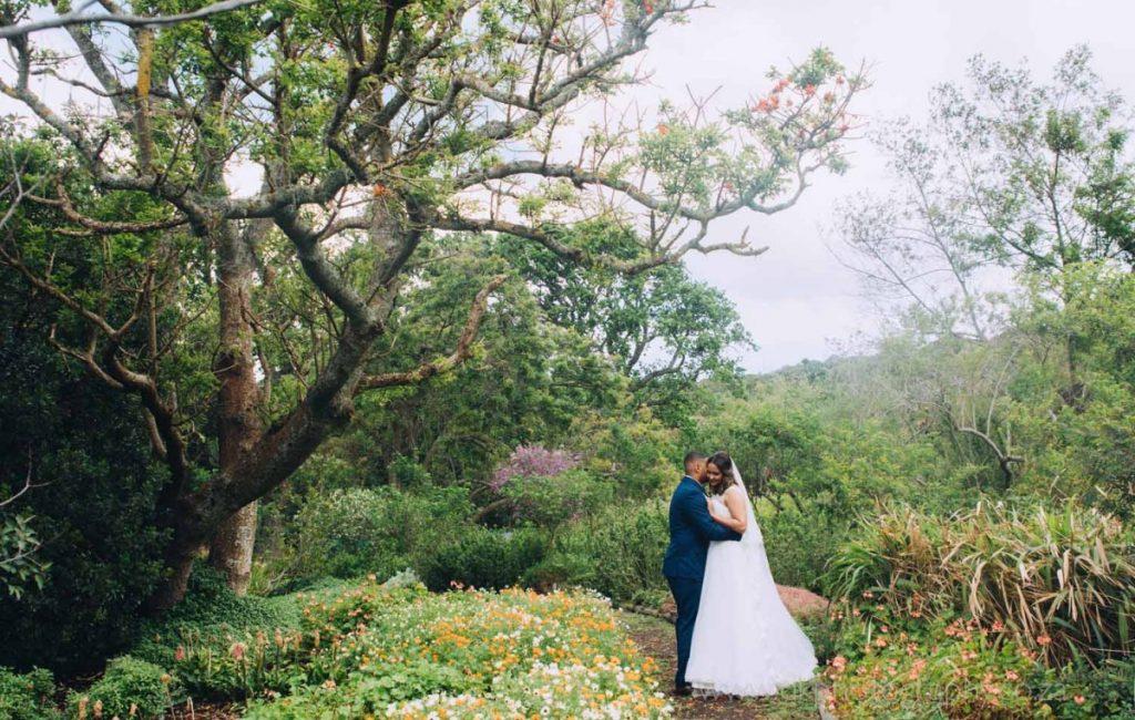 Preview ~ Renato & Stephanie's Wedding in Kirstenbosch Botanical Gardens