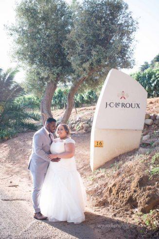 DK Photography DKP_8871-327x490 Preview ~ Preo & Kirsty's Wedding in Devon Valley & JC Le Roux, Stellenbosch