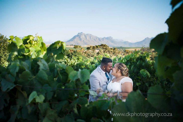 DK Photography DKP_8903-735x490 Preview ~ Preo & Kirsty's Wedding in Devon Valley & JC Le Roux, Stellenbosch